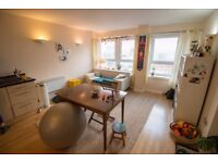 Short-term rent; great flat view great view in Woolwich!