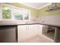 Newly Refurbished 1 Bedroom Apartment in Norwood