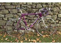Peugeot Professionnel Carbon 1200 Road Bicycle. 54,5cm, 14gears,700c Mavic wheels, Campagnolo Brak