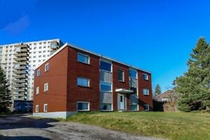 Newly renovated 3 bedroom apartment in Millidgeville