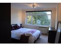 Furnished - Lovely 3 double bedroom flat in super central location - 33 Branksome Wood Road