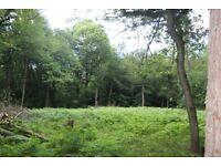 Plot D Land at Church Lane , Warlingham , Surrey , CR6 9PG