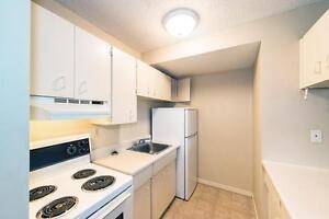 Primrose Lane Apartments - 8540-182 St. NW Edmonton Edmonton Area image 3