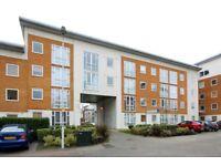 ONE bedroom flat in DOCKLANDS, E16 2RS, furnished, porter, PARKING, 2nd floor, NEW KITCHEN/BATHROOM
