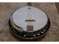 Rarely used 5 string Banjo