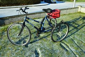 Dunehill Ariasta Adult Mountain Tricycle - 18 speed