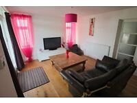 large 1 bed garden flat with kitchen, lounge,bathroom, utility room