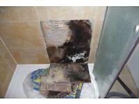 Regrouting tile & loose tile fixing