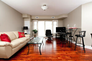 Large Open Concept Furnished Unit in Kingston's West End