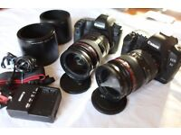 CANON 5D Mark II and Canon EF 24-70mm F2.8 L lens