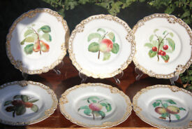 6 Stunning Handpainted Victorian Plates 1846 Orchard Fruits Antique Apple Cider Vintage Pear 19th C
