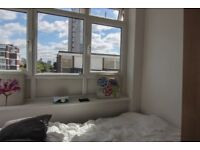 Bright and Cosy Single Room 5 min Walk to Crossharbour Station!