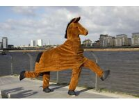 The Belfast Pantomime Horse Race