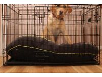 Dog cage 36 inches in length and height.