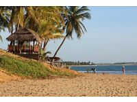 A Perfect Winter Break in Tropical Island of Sri Lanka