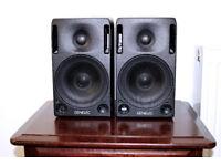 Genelec 1029a Studio Monitors / High Quality Speakers