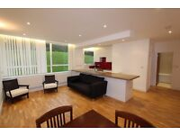 Fabulous Spacious, Bright Furnished Ground Floor ONE BED Apartment with Gym and Communal Gardens-N6