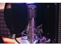 Peluso 22 47 LE Tube Condenser Microphone / Not Neumann, AKG, Telefunken, Aston, Audio Technica