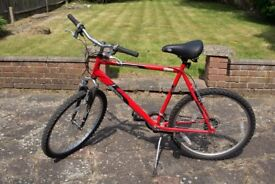 """Raleigh Mantaray mountain bicycle (56cm/22"""" frame) with a stand"""