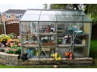 Greenhouse. 8ft x 6ft metal