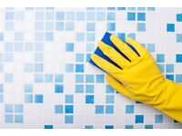 Professional & Experienced Cleaners - Throughout Manchester