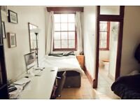 Bright and quiet studio in Dalston/Stoke Newington (december/january)
