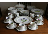 BEAUTIFUL BOTANICAL DINNER SERVICE and CUPS SAUCERS