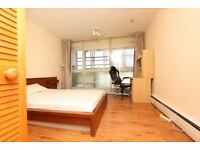 Amazing Room in Swiss Cottage