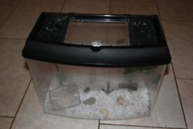 Fish tank with gravel and accessories