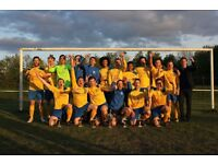 Senior Football Players wanted