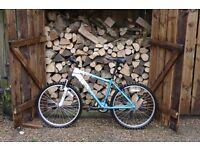 Girls, Ladies Apolo Bike, Twilight, FemTB , size 17 frame