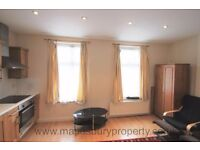 Large, 1st floor studio flat available now. Furnished. Single person only. DSS Accepted. NW10.