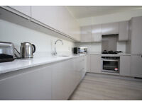 Stunning two bedroom apartment - Canary Wharf