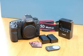 Canon 5d Mkii Full Frame 21.1 Megapixel Camera Body and Accessories