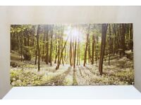 Panoramic Style Canvas