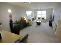 Beautiful 2 Bed/1 Bath Apartment in Ilford. Available from August.