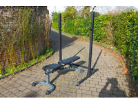 Squat rack with adjustable bench