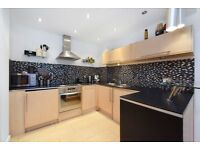 Westminister Location and Reasonable Price - Perfect flat for a Single Tenant. Very Clean and Modern