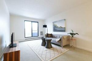 Renovated 2BD Apartment in Lawson Heights