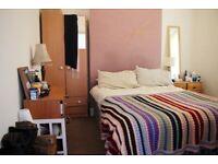 Double Room in Creative House (own bathroom)