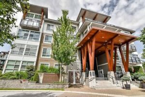 Luxurious Penthouse Condo in Salus - amazing amenities! pets ok!