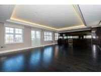 3 BED PENTHOUSE IN VICTORIA- LUXURY BUILDING SW1W FITZROVIA SECONDS FROM VICTORIA TUBE
