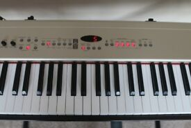 Roland FP-5 Digital Piano With Double-braced Giraffe X frame and Foot Pedal