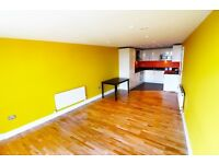 Remarkable and massive one bedroom modern flat available in ilford town centre--No DSS please