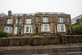 Superb 8 Bedroom Student House - Available July 2018 - Group Let