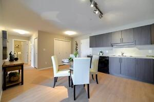$299  for the First 2 Months !!! 2 Bedrooms, 5 Appliances. Edmonton Edmonton Area image 6