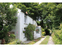 Cornwall Holiday Cottage - EASTER AVAILABILITY - near sea, family & dog friendly