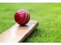 Cricket player batsman & bowler