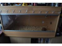 Snake With Vivarium For Sale (open to offers)