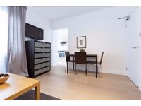 MINI 1 BEDROOM AVAILABLE IN SOUTH KENSINGTON~IMPERIAL COLLEGE~NATIONAL HISTORY MUSEUM~ALL BILLS INC~